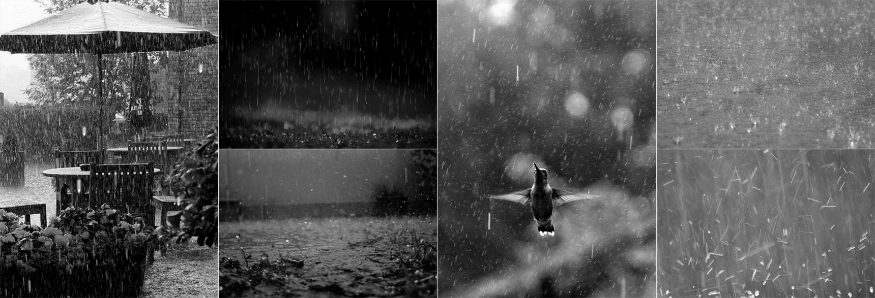 fisherman_ref_rain